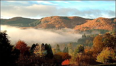 Tummel Valley View from Rowanlea