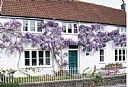 York Cottage Bed And Breakfast, Bed and Breakfast Accommodation, Bristol