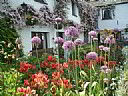 Buckle Yeat, Guest House Accommodation, Ambleside