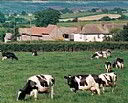 Rydon Farm, Bed and Breakfast Accommodation, Exeter