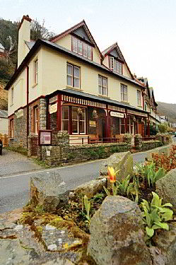 Lynmouth Bed And Breakfasts Guest Houses That Are Dog Friendly
