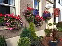 Caledonia Guest House, Guest House Accommodation, Penrith