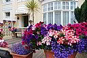 The Montana, Bed and Breakfast Accommodation, Torquay