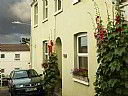 Bideford Vegetarian Bnb, Bed and Breakfast Accommodation, Bideford