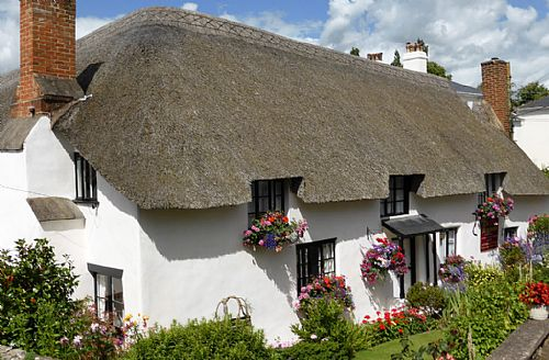 Lovely thatched farmhouse bed & breakfast in Sidmouth